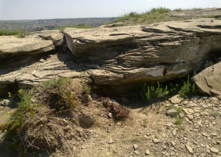 Theodore Roosevelt National Park Rock 2014-07-03