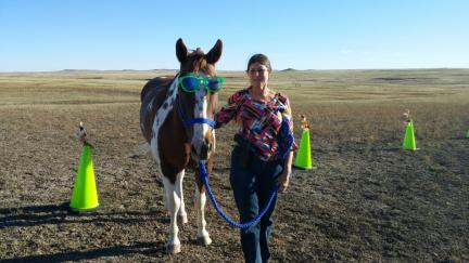 Horse Tricks Arrow Wearing Sunglasses 2015-10-10