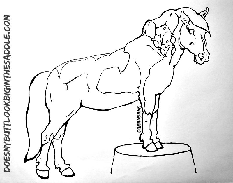 Horse Agility Coloring Book Dream Maker Pedestal