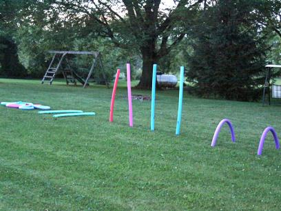 Pool Noodle Agility Course
